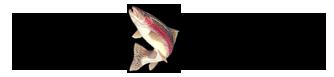 Lago Verde Pesca Alla Trota, Carpa, Storione e Pesce Gatto Africano