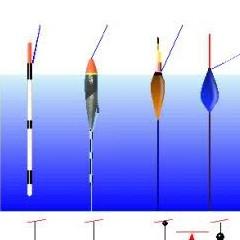 Pesca Alla Trota Con Galleggiante